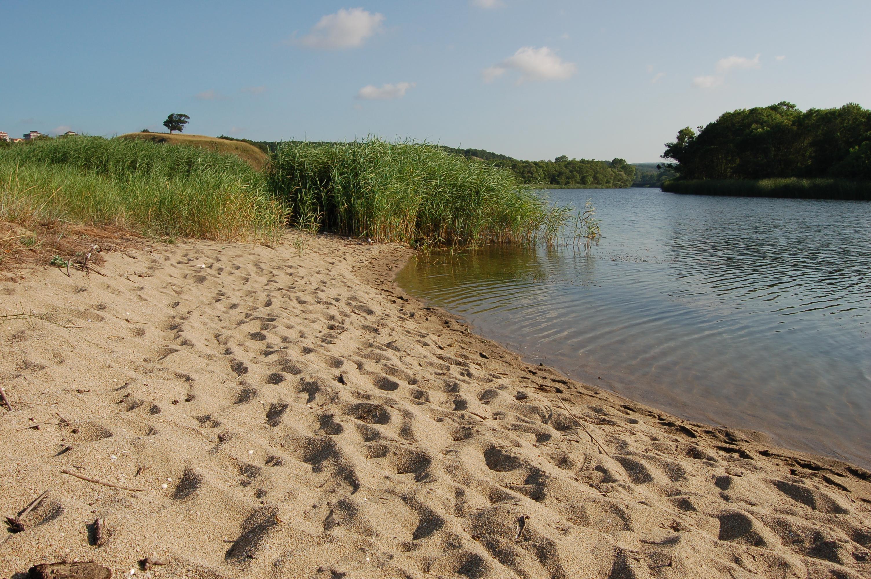 Река Велека, където се влива в морето